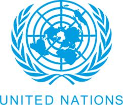 کمیته متخصصین سازمان ملل متحد